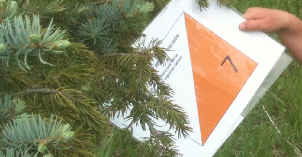 Why just run when you can orienteer?